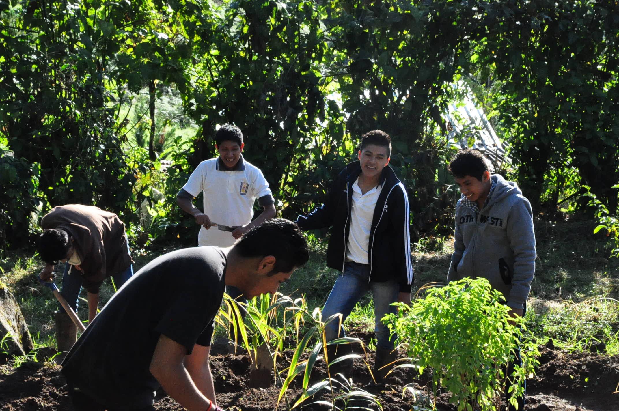 Die indigenen Jugendlichen arbeiten im schuleigenen Garten