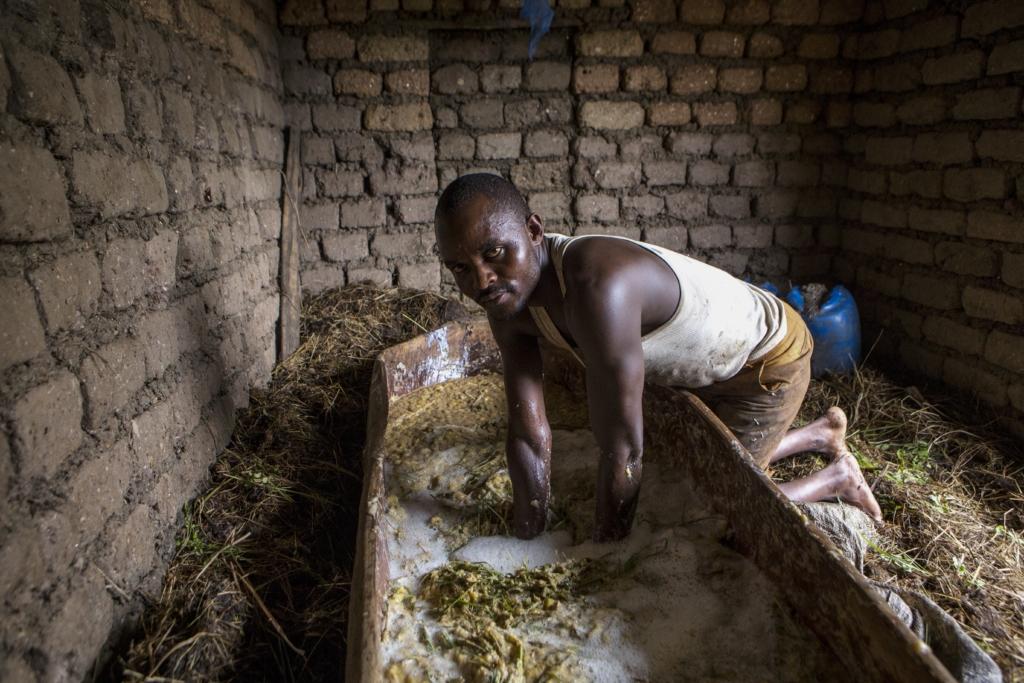 Jean Bizimana Fotografie: Ein Bananenbierproduzent bei der Arbeit.